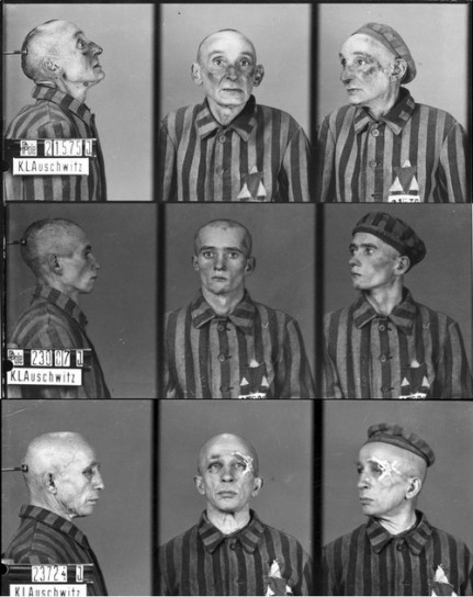 Wilhelm Brasse The Photographer In The Auschwitz Www