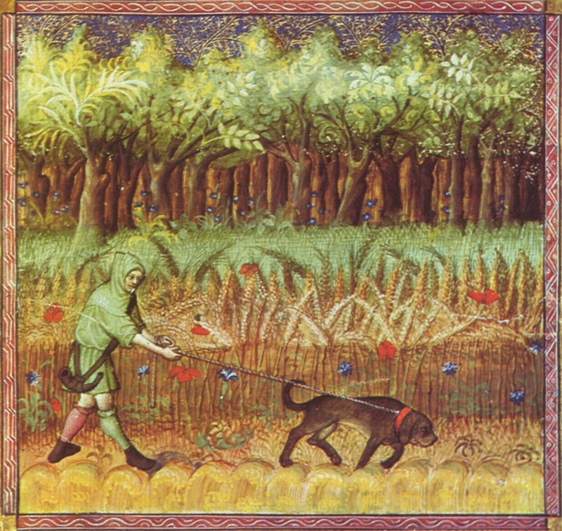 The hunting with hounds