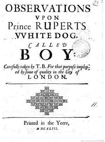 Observations upon Prince Rupert's White Dog Called Boy