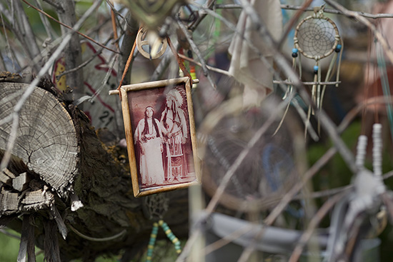 A string of beads hangs from the Prayer Tree near the Bear River Massacre site